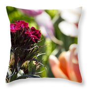 Flowers At Dallas Arboretum V13 Throw Pillow