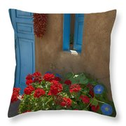 Flowers At Ranchos De Taos Throw Pillow