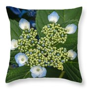 Flowers At Soos Creek Botanical Garden II Throw Pillow
