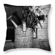 Flowers At The Door  Throw Pillow by Empty Wall