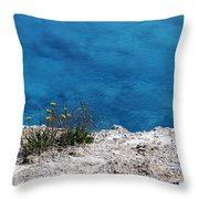 Flowers By The Blue Throw Pillow