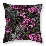 Flowers Dallas Arboretum V16 Throw Pillow