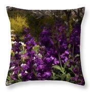 Flowers Dallas Arboretum V18 Throw Pillow