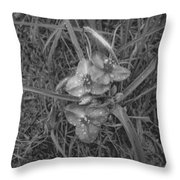 Flowers In Spring Black And White Throw Pillow