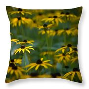 Flowers In The Fields Throw Pillow