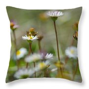Flowers In The Hight Mountains. Throw Pillow
