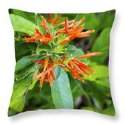 Flowers In The Neighborhood Throw Pillow