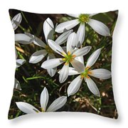 Flowers In The Pot Throw Pillow