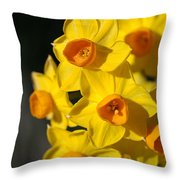 flowers-Jonquils-bright yellow Throw Pillow