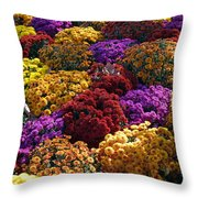 Flowers Near The Grand Palais Off Of Champ Elysees In Paris France   Throw Pillow