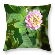 Flowers Of Pink And Orange Throw Pillow