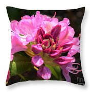 Flowers Of Spring Throw Pillow