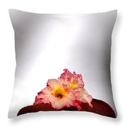 Flowers On Towel Throw Pillow by Olivier Le Queinec
