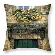 Flowers Over Doorway Throw Pillow
