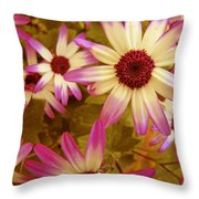 Flowers Pink And White Throw Pillow