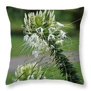 Flowers Pt. 1 Throw Pillow