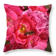 Flowers-roses-pink-bee Throw Pillow