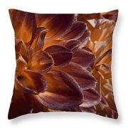 Flowers Should Also Turn Brown In Autumn Throw Pillow