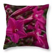 Flowers-waimea Arboretum  Throw Pillow
