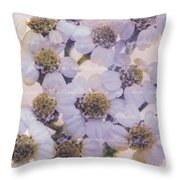 Flowery Greetings Throw Pillow