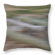 Flowing Abstract Throw Pillow
