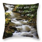 Flowing Creek With Scripture Throw Pillow