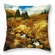 Flowing Down To Aspen Throw Pillow
