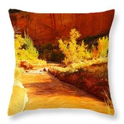 Flowing From Capital Reef Throw Pillow