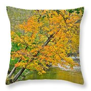 Flowing River Leaning Tree Throw Pillow