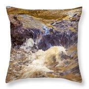 Flowing River Rapids Throw Pillow