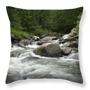 Flowing Stream In Vermont Throw Pillow
