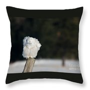 Fluffing Feathers Throw Pillow