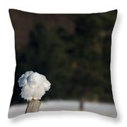 Fluffing On A Fence Post Throw Pillow