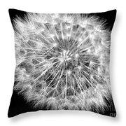 Fluffy Dandelion On Black Throw Pillow