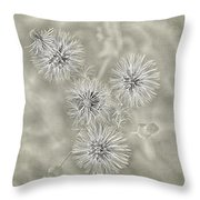 Fluffy Dandelions  Throw Pillow