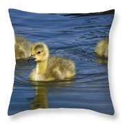 Fluffy Floaters  Throw Pillow