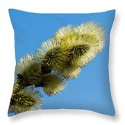 Fluffy Spring - 1 - Featured 3 Throw Pillow