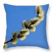 Fluffy Spring - 3 - Featured 3 Throw Pillow