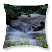 Fluid Beauty Throw Pillow