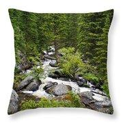 Fluid Motion - Crazy Woman Canyon - Crazy Woman Creek - Johnson County - Wyoming Throw Pillow