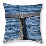 Flukes Of A Sperm Whale 2 Throw Pillow by Heiko Koehrer-Wagner