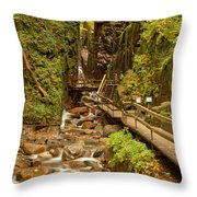 Flume Gorge At Franconia Notch Throw Pillow