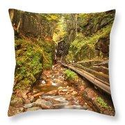 Flume Gorge Landscape Throw Pillow