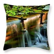 Flume Overflow  Throw Pillow