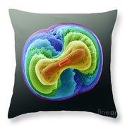 Fluorapatite Crystal Throw Pillow
