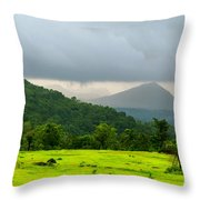 Fluorescent Throw Pillow