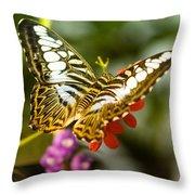Fluttering Throw Pillow