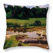 Fluvial Landscape Throw Pillow