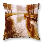 Flowing Its Course Throw Pillow