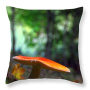 Fly Agaric Throw Pillow
